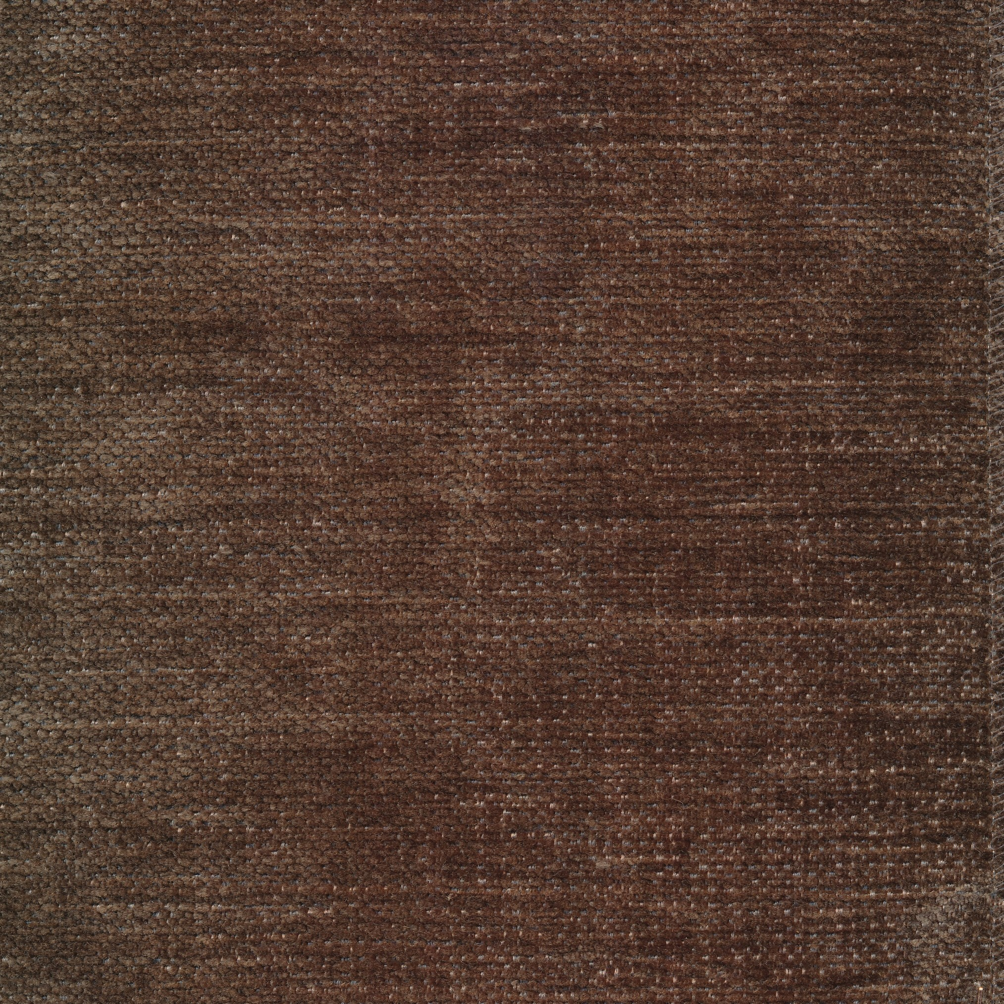 IMAGE TAUPE